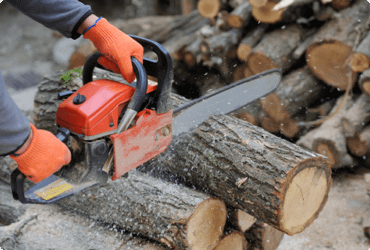 A worker cuts logs with a chainsaw after taking the chainsaw refresher course